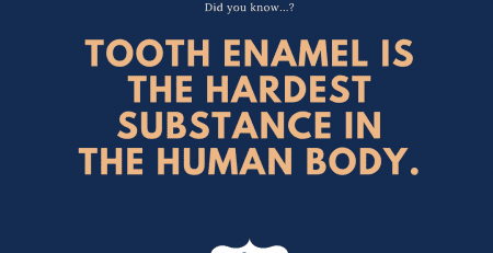 Tooth enamel is the hardest substance in the human body